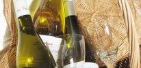 Centre-Loire Vineyard – Wine Appellations