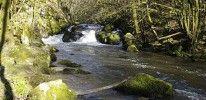 Perigord-Limousin Regional Natural Park