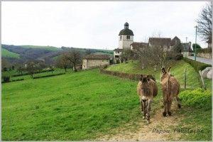 La-Chataignerie-Mourjou-ob_359e91_dsc01539-gf