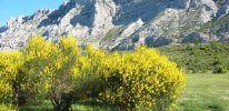 Montagne Sainte-Victoire – Provence