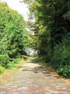 A hidden garden in Montmartre village