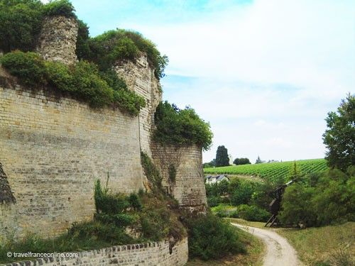 Chateau de Chinon - Fortifications and vineyard