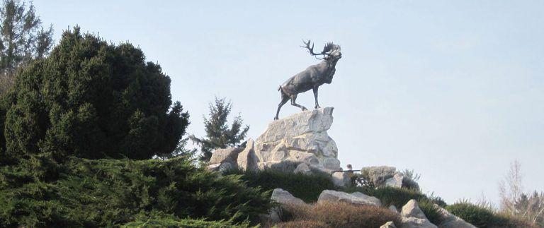 Newfoundland Memorial Park – Beaumont Hamel