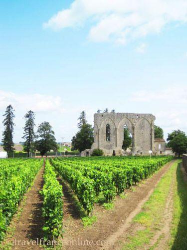 Saint-Emilion wines - Former abbey cloister