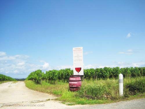 Saint-Emilion wines - Entrance to a vineyard