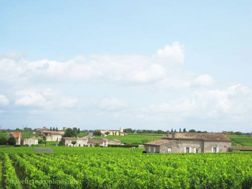 Saint-Emilion wines - Vineyard located by the former episcopal palace