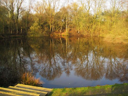 Spanbroekmolen Crater in Flanders - Pool of Peace
