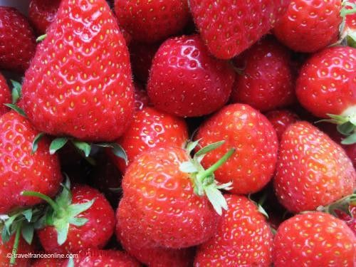 Strawberries from Perigord - Dordogne