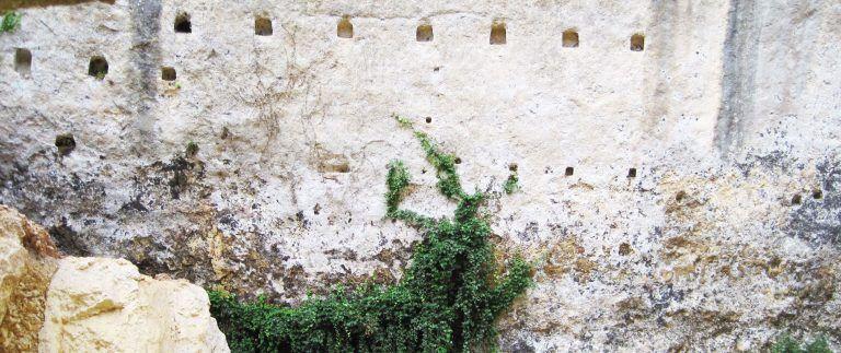 Laugerie Basse – Laugerie Haute – Dordogne