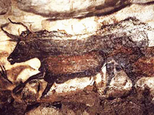 The Black Cow in Lascaux Cave