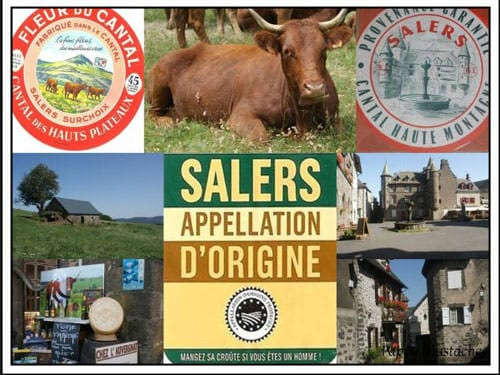 Salers Cheese labels