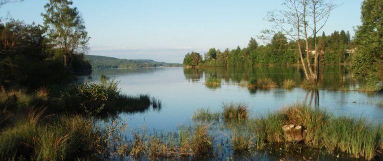Lac de Vassiviere – Millevaches – Limousin