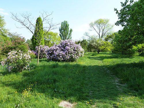 Arboretum Breuil in Bois de Vincennes