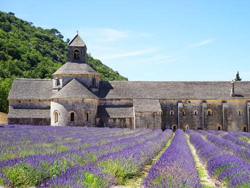 Abbaye Notre-Dame de Senanque