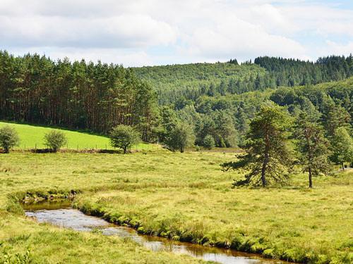 Plateau de Millevaches - L'ars river