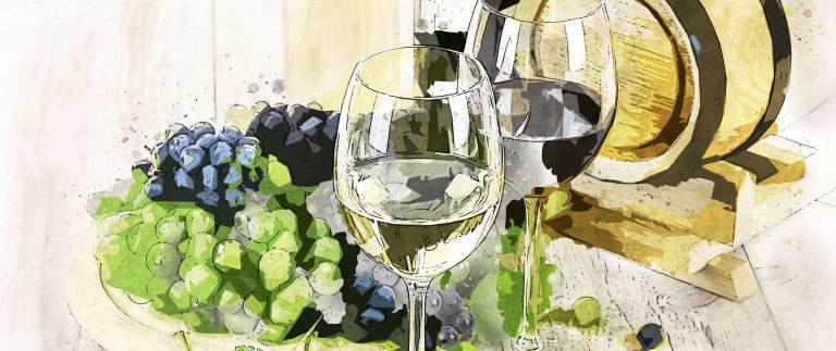 Loire Valley Vineyard – Wine Appellations