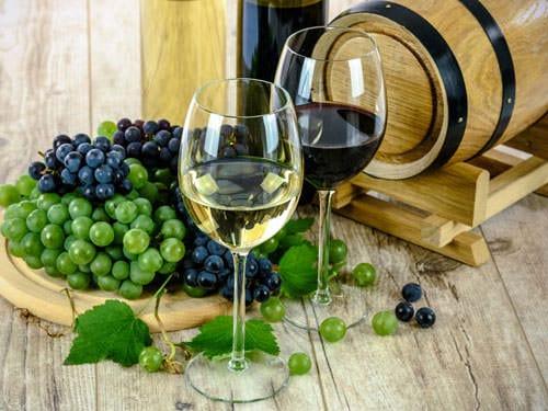 Loire Valley Vineyard