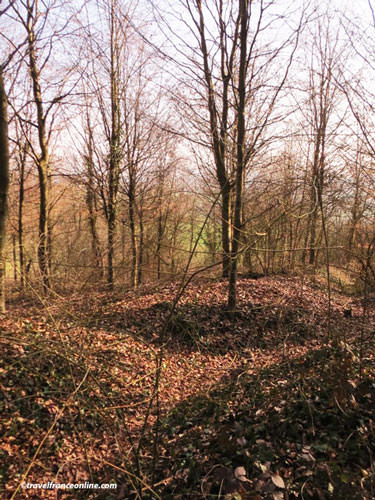 Plateau de Californie - Former trenches and craters - Chemin des Dames