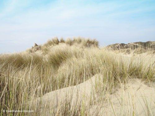 Dunes along the Opal Coast