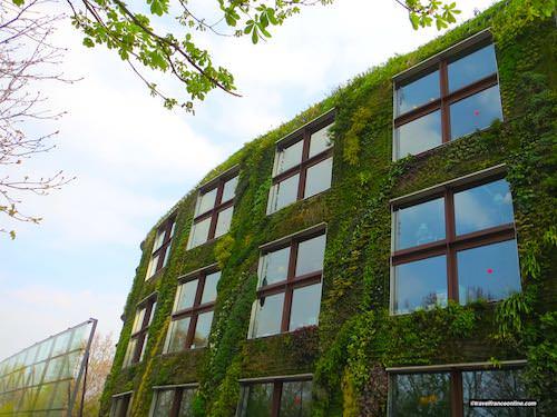 Musée du Quai Branly - Jacques Chirac vertical garden
