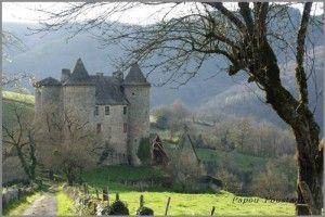 Chataigneraie-Cantal-Senerzegue-ob_bab235_dsc01444-gf