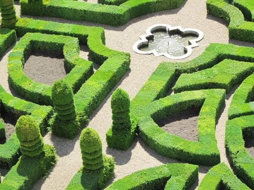 Villandry formal gardens