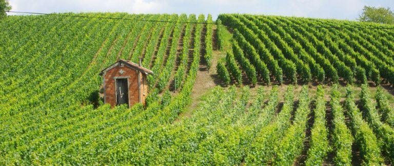Champagne-Ardenne former administrative region