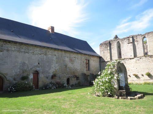 Ile Chauvet Abbey - Gothic well