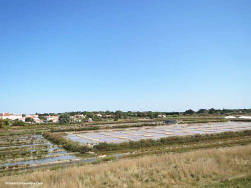 Ile de Noirmoutier - Salt marshes in Noirmoutier-en-l'Ile