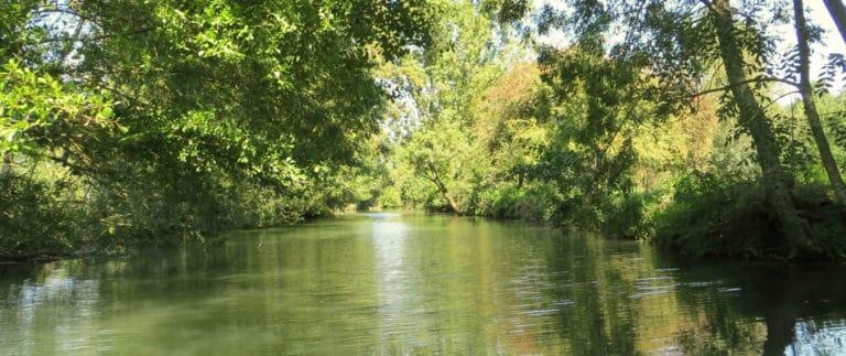Poitevin Marsh, the Green Venice