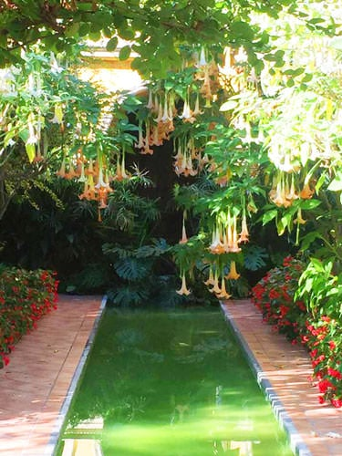 Villa Ephrussi de Rothschild in Saint-Jean-Cap-Ferrat - Spanish garden