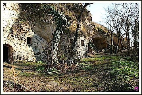 Les Grottes de Perrier - Cellars