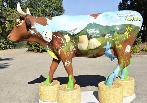 Cow advertising Cantal Cheese