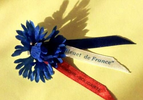 Bleuet de France worn on Remembrance Day