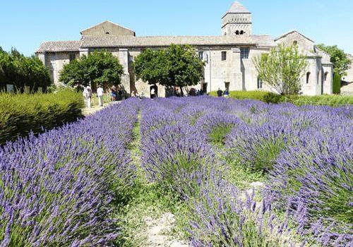Saint Remy de Provence - Saint-Paul-de-Mausole